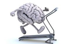脳 活性化