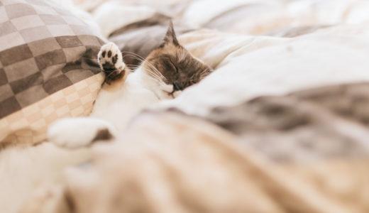 睡眠の質を高めるために心掛けるべき5つの生活習慣