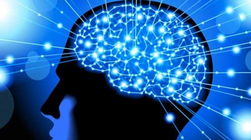 脳 活性化3