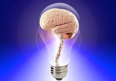 """記憶力アップに欠かせない""""海馬""""を鍛えて活性化する方法"""